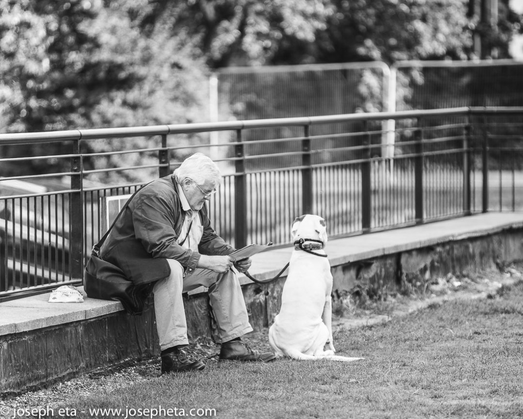 A mature man sitting down with his dog at the South Bank in London and reading a newspaper