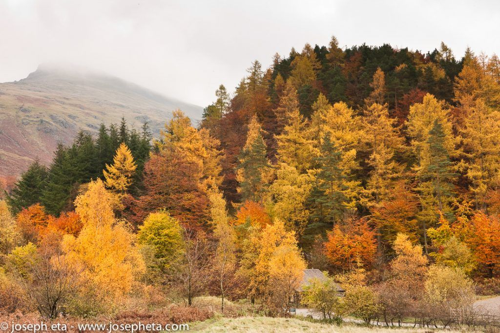 Autumn in the Lake District in the UK