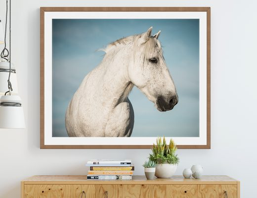 Prints that capture the beauty and power of the equine form